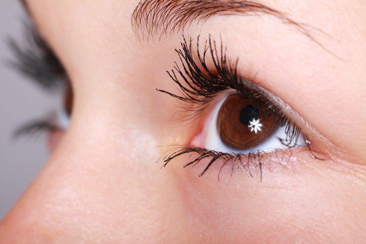 Oczy to ekstrawagancki narząd. To właśnie dzięki nim rozróżniamy.